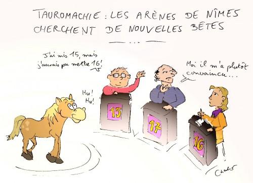 cheval tauromachie 002